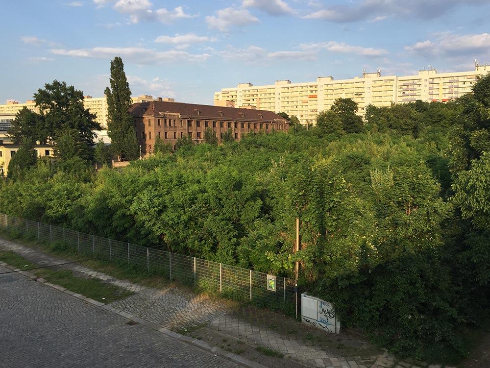 Brachfläche in Dresden