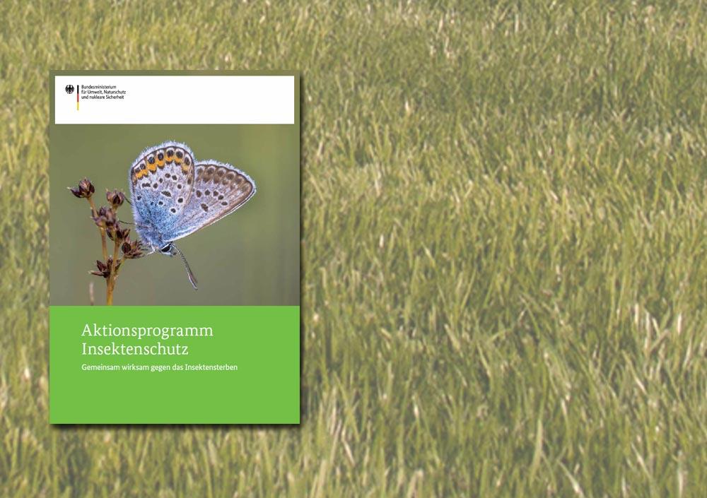 """Titelcover """"Aktionsprogramm Insektenschutz"""""""